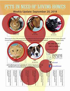 Pet Flyer Weekly Pet Flyer September 20 2018 Humane Society Of