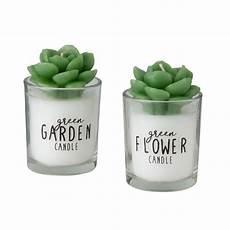 candele vetro 2 candele piante grasse bianche e verdi con vetro stato