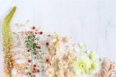 aesthetic flower desktop wallpaper digital blooms september 2016 p l a n t s t h i n g s
