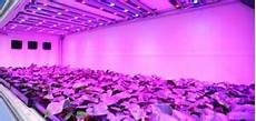 The Best Led Grow Lights 2015 Best Led Grow Lights 2015 Comparison Amp Reviews Of The
