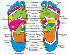 Spinal Pressure Points Chart Does Pressure Point Therapy Reflexology Really Work