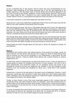 Essay Of Life Practice Sample Student Essays