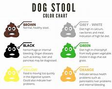 Dog Stool Colour Chart A Complete Guide To Dog S Stool Color Shape