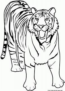 printable animal tiger of africa coloring pages for