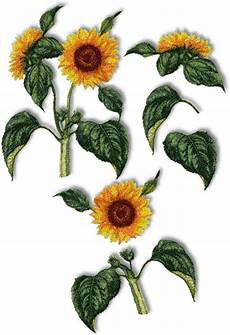 advanced embroidery designs sunflower set