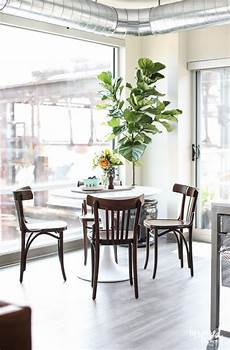 dining room ideas for apartments my apartment dining room
