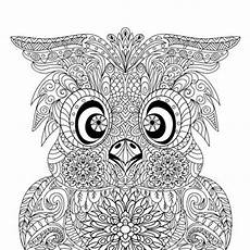 Ausmalbilder Eulen Schwer Items Similar To Instant Owl Portrait Coloring