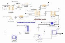 Bioprocess Flow Chart Process Flow Diagram Of Lysine Production Plant 2
