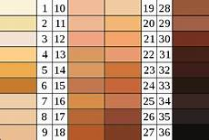 Skin Color Scale Chart How I Lost Half Of Me But Became Whole Von Luschan S Scale