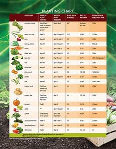 Sow Chart Sow What Helpful Tips On When To Start Planting Seeds In