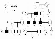Pedigree Chart For Free Or Attached Earlobes Solved Question Why Would Maternal Inheritance Be Imposs