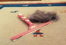 prodotti per pulire tappeti puliscivetri per rimuovere dai tappeti il pelo di animale
