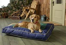 orthopedic memory foam beds dogappy