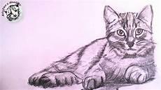 dibujos de gatos como dibujar un gato realista a lapiz paso a paso