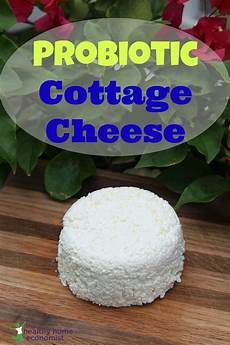 cottage cheese buy probiotic cottage cheese the healthy home economist