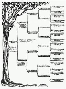Family Template Family Tree Template Fotolip