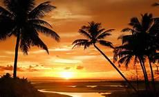 strand solnedgang tropisk strand solnedg 229 ng palmer 888wm fototapetonline se