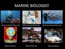 What Do Wildlife Biologists Do Image 249784 Marines And Animal
