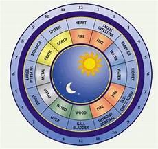 Circadian Rhythm Chart I Like This Circadian Rhythm Chart A Lot Too Chinese