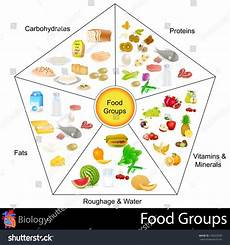Food Groups Chart Easy Edit Vector Illustration Food Group Stock Vector