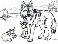 desenho de lobos lobos desenhos para colorir