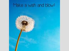 Make A Wish & Have a Great Day. Free Have a Great Day