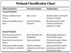 Cowardin Classification Chart Wetland Ecosystem