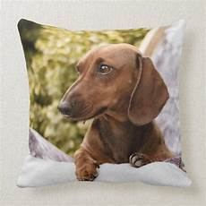 dachshund clothes for aesthetic i my dachshund throw pillow zazzle in 2020