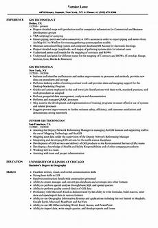 Gis Resume Entry Level Gis Resume Examples Best Resume Examples