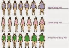 Body Size Chart I Love Fun Female Body Type Chart