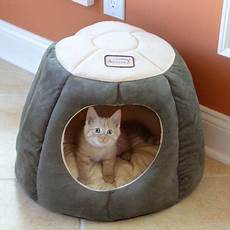 armarkat cat bed laurel green and beige c30hml mh