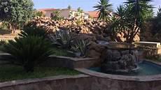 giardini di pietra piante grasse da esterno