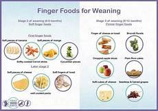 Weaning Food Chart Weaning Foods Driverlayer Search Engine