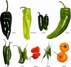Pepper Chart A Visual Guide To Peppers And Chilis Gear Patrol