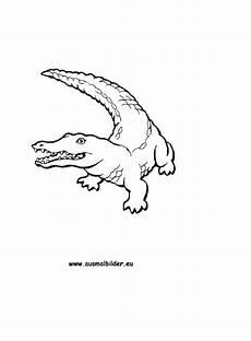Ausmalbilder Kostenlos Ausdrucken Krokodil Ausmalbilder Krokodil Kostenlos Malvorlagen Zum
