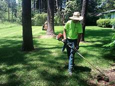 Yard Mowing Service Residential Lawn Service Mowing Pruning Amp More Mr Tree