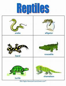 Animal Chart For Kindergarten Reptiles Chart Www Loving2learn Com Reptiles Early