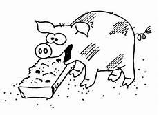 Schwein Malvorlagen Bilder Schlafendes Schwein Wuschels Malvorlagen