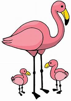 flamingo zeichnen lernen zeichnen lernen zeichnen und