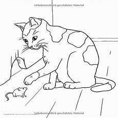 malvorlagen tiere zum ausdrucken quiz