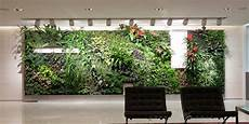 Plant Wall Lighting Ihidrousa Quot Your One Stop Grow Shop Quot The Essentials Of