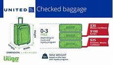 United Domestic Baggage Fees United Airlines Overhead Storage Dimensions Dandk Organizer