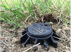 Dealing with Broken Sprinkler Heads   No Bugs No Weeds