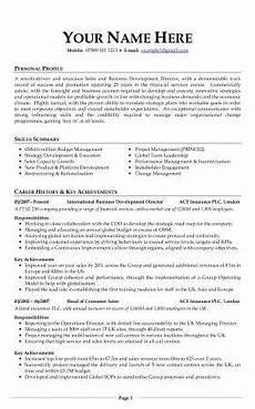 Professional Curriculum Vitae Sample Professional Cv Download Examples Cv Template Cv