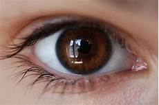 How To Get Light Brown Eyes Fast If You Have Brown Eyes It Means Something Very Special