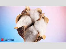 Organic cotton production declines in India as brands