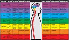 Whole Brain Child Ages And Stages Chart Whole Brain Development Kaushalya Global