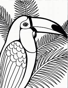 coloring now 187 archive 187 bird coloring pages