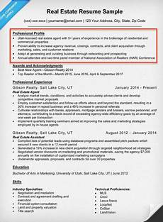 What To Write In Resume Resume Profile Examples Amp Writing Guide Resume Companion