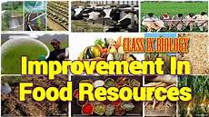 Food Resources Improvement In Food Resources Class 9 Biology Full